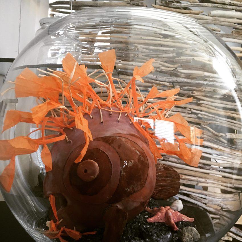 IMG 6866 1 850x850 - Fisch im runden Aquariumglas